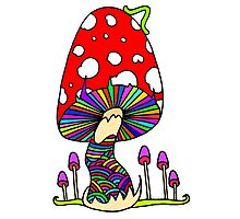 Mother Mushroom Photographic Print