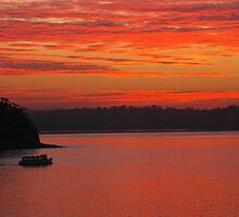Bundeena Ferry heading home at sunset by Leeee