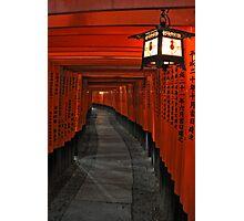 Torii gates Photographic Print