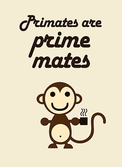 Primates are Prime Mates by jezkemp