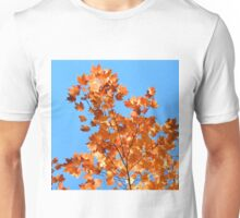 Autumnal Fire Unisex T-Shirt