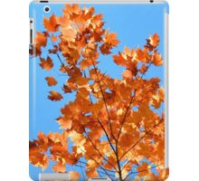 Autumnal Fire iPad Case/Skin