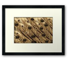 "Digital Abstract Pattern ""Feathers,Fur and Eyes"""" Framed Print"