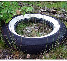 Retired Tire by Duck-Flower