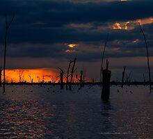 Lake Mulwala Colours, NSW by Emily Jansen