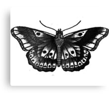 Harry Styles Butterfly Tattoo Canvas Print