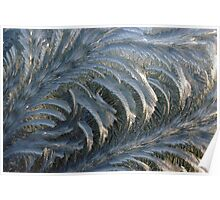 Ice crystals form on a window on a winter morning Poster