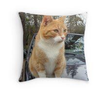 Rex~Just Hangin' Out Throw Pillow