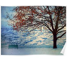 Winter in Peachland Poster