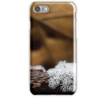 white mold iPhone Case/Skin