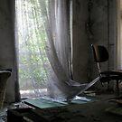 Abandoned Iraqi Embassy, Berlin '09 by Elsa Thorp