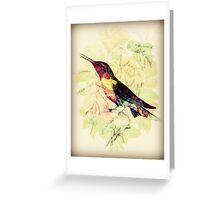 Charming Bird - Digital Art Print  Greeting Card