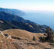 Big Sur Views from Timber Top by olmik