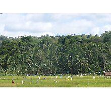 a desolate Timor-Leste landscape Photographic Print