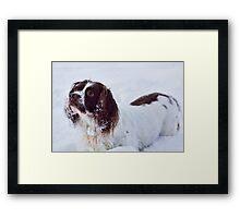Snow Fun Framed Print