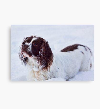 Snow Fun Canvas Print