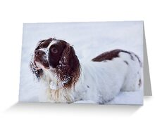 Snow Fun Greeting Card