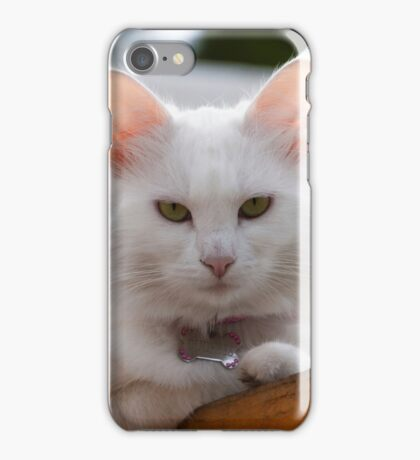 Really not another picture! iPhone Case/Skin