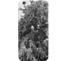 Frozen Tree iPhone Case/Skin