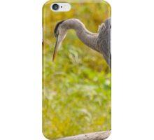 Big Bird iPhone Case/Skin
