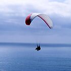 Paragliding ~ La Jolla, California by John and Marie  Sharp