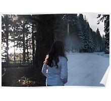 Enter Narnia Poster