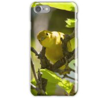 Oye! iPhone Case/Skin