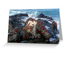 Red Crabs Greeting Card