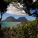 Mounts Gower and Lidgard, Lord Howe Island by Bill  Russo