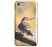 Woody Woodpecker iPhone Case/Skin