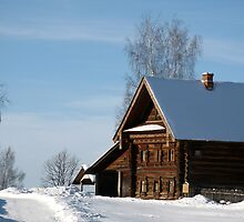 Welcome to Russian winter by Yulia Manko