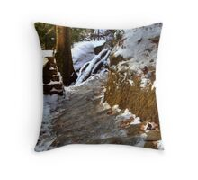 Icy Steps Throw Pillow