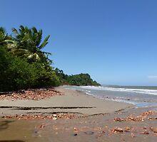a wonderful Trinidad and Tobago landscape by beautifulscenes