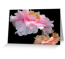 Pas de Deux Glowing Peonies Greeting Card