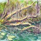 Swamp Tree (pastel) by Niki Hilsabeck