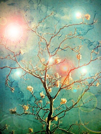 The Memory of Dreams by Tara  Turner