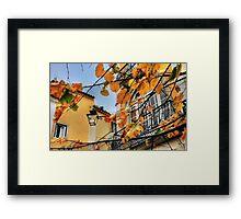 Sintra leaves... Framed Print