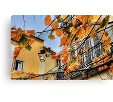 Sintra leaves... Canvas Print