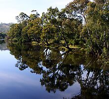 Goulburn Reflections by Jenni Tanner