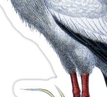 Vintage Stork Sticker