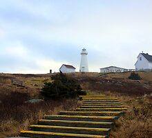 The Stairs to the Lighthouse  by mikeyc1978