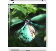 Jade Butterfly iPad Case/Skin