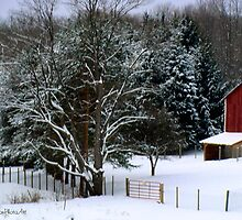 A Winter Landscape in PA by vigor