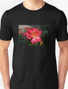Beautiful Pink and Yellow Rose Unisex T-Shirt