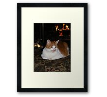 Molly Enjoying The Fireplace Framed Print