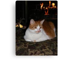 Molly Enjoying The Fireplace Canvas Print