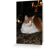 Molly Enjoying The Fireplace Greeting Card