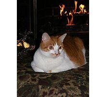 Molly Enjoying The Fireplace Photographic Print