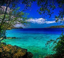 Coki Beach St Thomas, USVI by Nick  Cardona