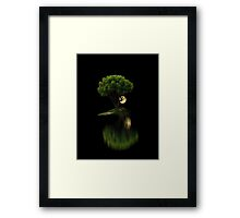 449 Framed Print